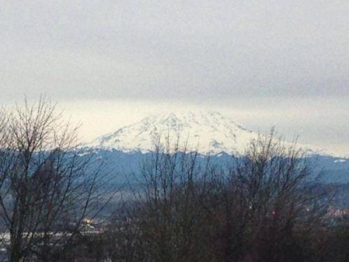 View of a snowy mountain at Pacific Northwest Regional Gathering in Tacoma, WA.
