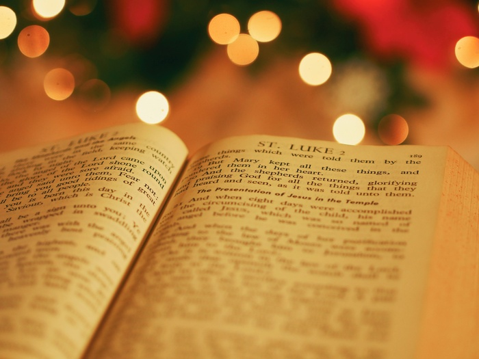 Open book with blurred Christmas tree in the background
