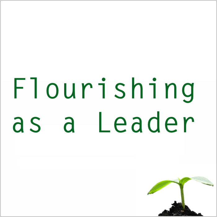 Flourishing as a Leader