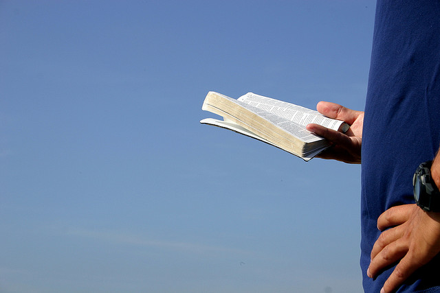 Person standing holding and reading an open book