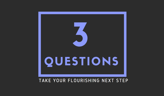 3 Questions - Take your flourishing next step