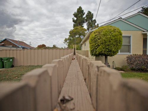 Wooden fence dividing two persons' homes